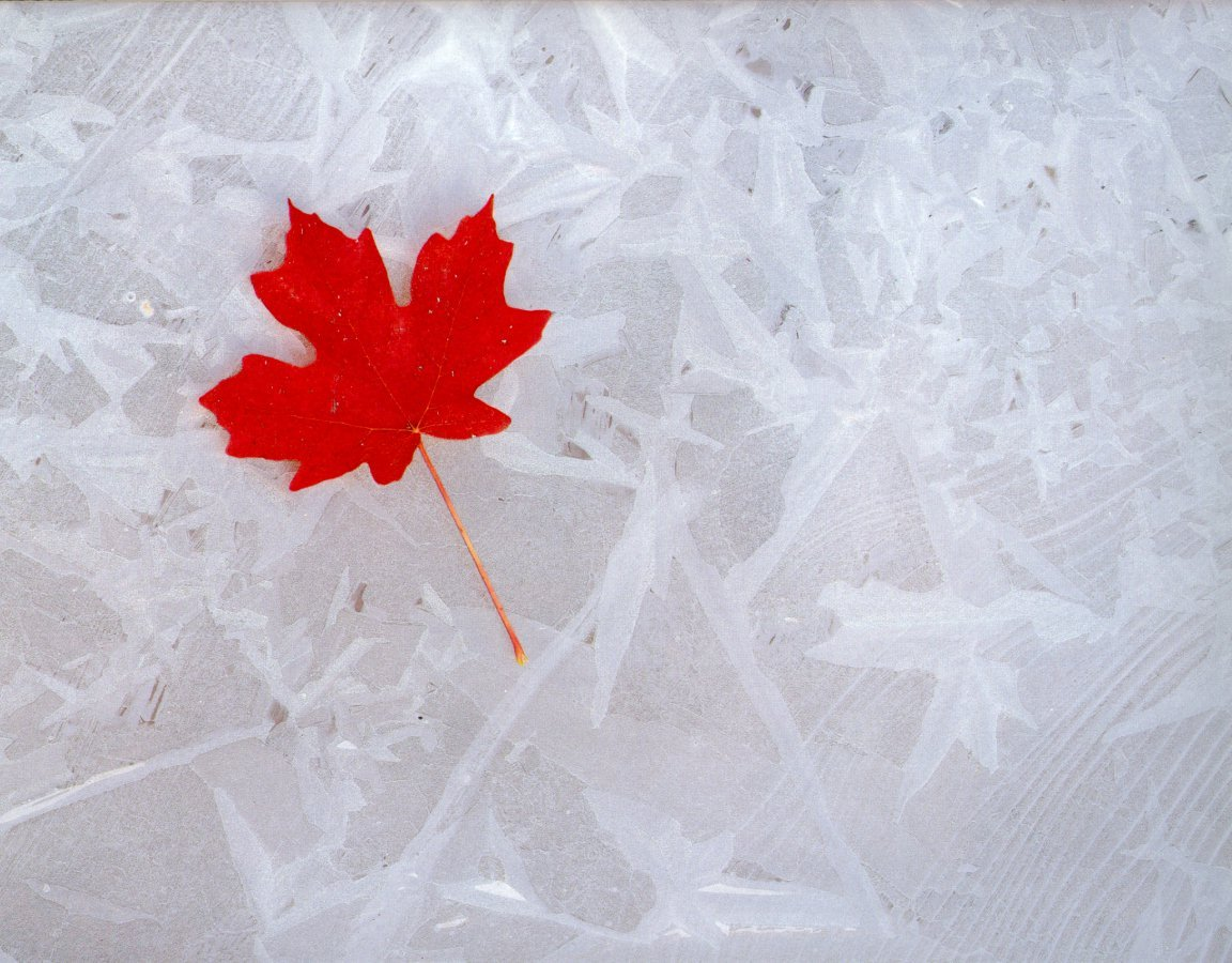 background-banner-canada